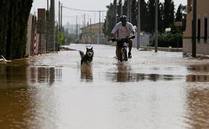 Hallado con vida en Alicante un hombre arrastrado por el agua cuando iba en un 'quad'
