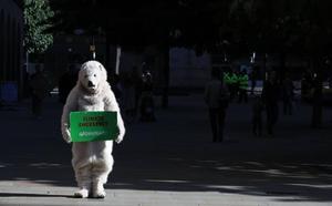 Los partidos de la gran coalición alemana acuerdan un paquete de medidas medioambientales