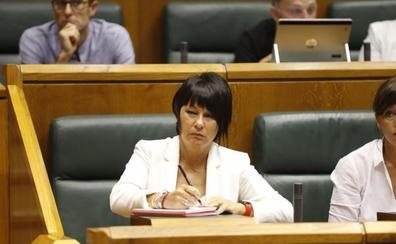 EH Bildu advierte a Urkullu de que «si hay voluntad» se comprometerá con la gobernalidad «sin esperar a lo que pasa en Madrid»