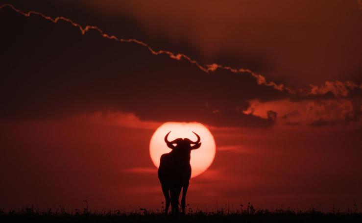 Reserva natural en Kenia