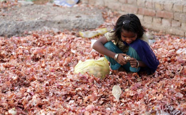 Las cebollas, ingrediente fundamental de la India