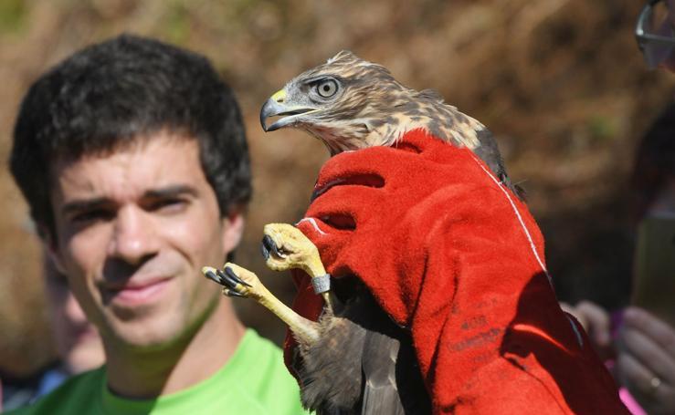 Suelta de aves en el parque natural de Aia