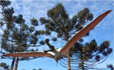 Hallan restos de nueva especie de reptil volador prehistórico en Australia