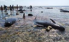 Ballenas muertas en Indonesia