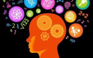 El cerebro infantil tiene más plasticidad de lo que se creía