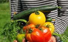 ¿No te gusta la verdura? 5 recetas con vegetales que te harán cambiar de idea