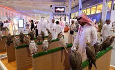 Exhibición de los halcones en Riad
