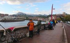 El LXVI Concurso Intersocial de Pesca al Lanzado se celebrará el próximo domingo
