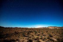 Visión espectacular desde el Parque Natural de Árboles de Josué