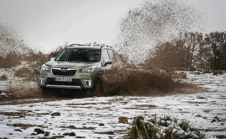 Fotos del Forester Eco Hybrid, el híbrido de Subaru