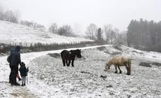 La nieve vuelve al interior de Gipuzkoa