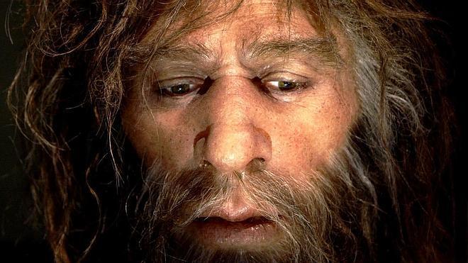 Reconstruyen por primera vez el epigenoma de un Neandertal