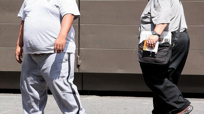 Las bacterias intestinales podrían causar resistencia a la insulina