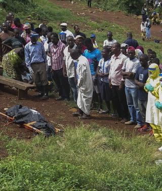 La OMS actualiza a 4.951 muertos y 13.767 casos su balance por el ébola