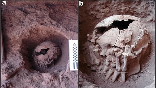 Hallan en Brasil el caso de decapitación más antiguo de América, de hace 9.500 años