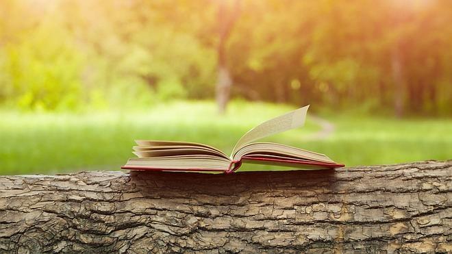 Cocineros: los libros que les hacen viajar
