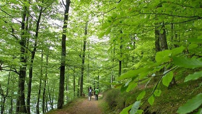Embalses de Leurtza: un paraíso de la naturaleza