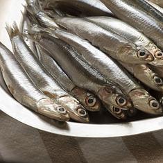 Darpón cree que no ha alertado «en exceso» sobre el anisakis y aconseja comer la anchoa cocinada o tras congelarla