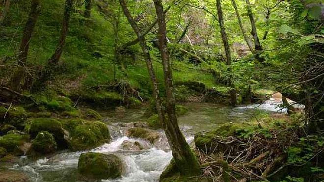 El río Ayuda: un desfiladero con magia