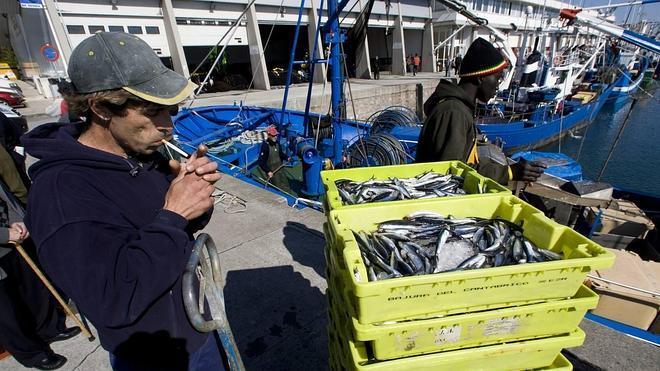 Atraer a jóvenes arrantzales, apuesta del Gobierno Vasco para reforzar la pesca