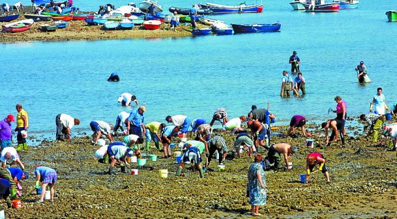 Se prohíbe por octavo año el marisqueo en la bahía de Txingudi