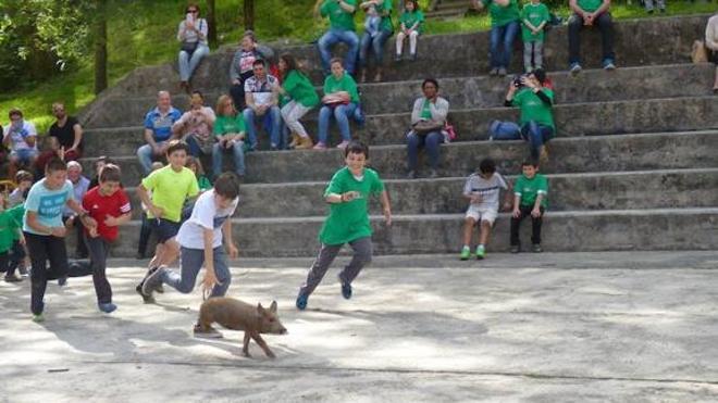 Equo denuncia ante la Diputación el espectáculo infantil 'Gorriti y sus animales'