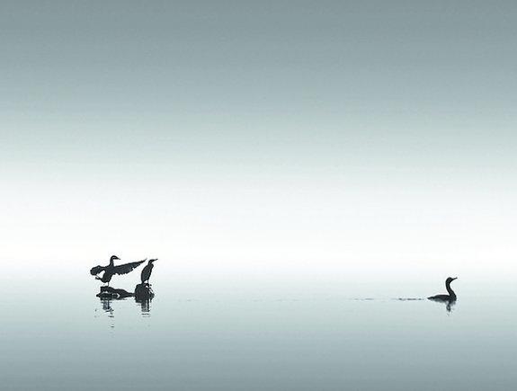 Me gusta la fotograf a en blanco y negro de paisajes y for Foto minimaliste